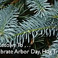 Day 114 - I Resolve To™. . . Hug My Trees!