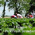 Day 143 - I Resolve To™. . . Buy Local Produce - Help Farmers & Eat Fresh!