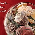 Day 150 - I Resolve To® . . . Preserve Wonderful Days At The Beach With My Seashell Collection!