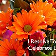 Day 150 -I Resolve To® . . . Take Small, Concrete Daily Steps Toward Good Health & Happiness! (2010)