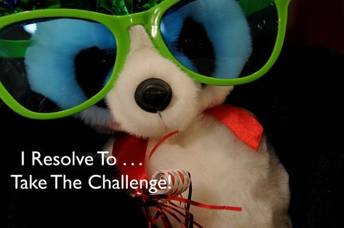 Day 1 - I Resolve To® . . . Take The Third Challenge: 365 Resolutions For Health & Happiness! (2011)
