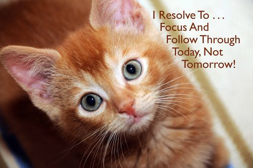 Day 109 - I Resolve To® . . . Be Proactive! - (2010)