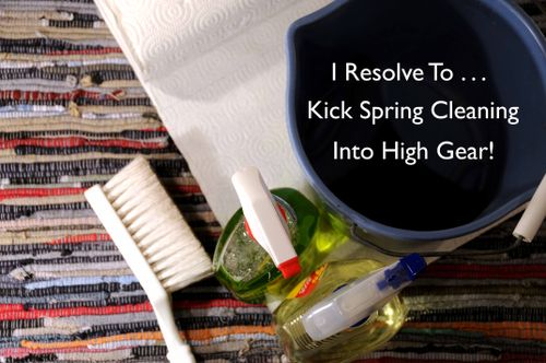 Day 115 - I Resolve To™. . . Have Fun With My Spring Cleaning!